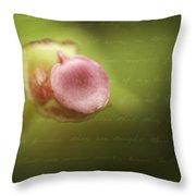 Begonia Bud Throw Pillow