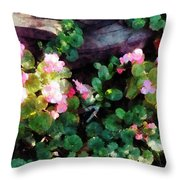 Begonias By Stone Wall Throw Pillow