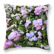 Begonias In Bloom Throw Pillow
