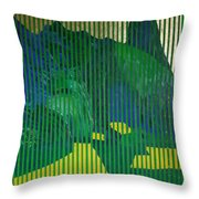 Behind The Blinds Throw Pillow