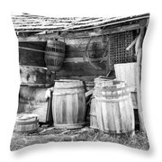 Behind The Hetchler House Throw Pillow