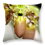 Beige Lady Slipper Orchids Throw Pillow