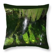 Bein' Green Throw Pillow