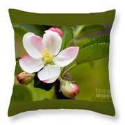 Being Fruitful Throw Pillow