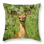Being Watched Throw Pillow by Ernie Echols