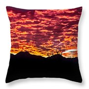 Believe It Or Not Throw Pillow