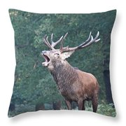 Bellowing Red Deer Stag Throw Pillow