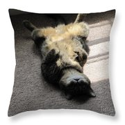 Belly Up Throw Pillow