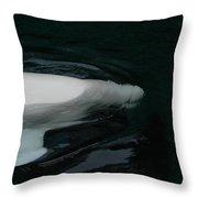 Beluga Impressions 3 Throw Pillow