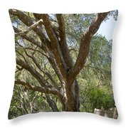 Bench And Tree In Cambria Throw Pillow