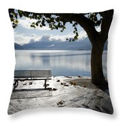 Bench And Tree On The Lakefront Throw Pillow