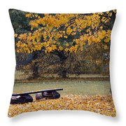 Bench In The Autumn Landscape Throw Pillow