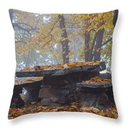 Benches And Table In Autumn Throw Pillow