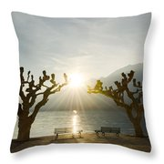 Benches And Trees On The Lakefront Throw Pillow