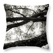 Beneath The Old Apple Tree Throw Pillow