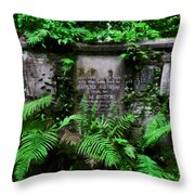 Beneath This Stone  Throw Pillow