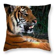 Bengal Tiger - Teeth Throw Pillow
