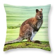 Bennets Wallaby  Throw Pillow