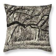 Bent Trees Sepia Toned Throw Pillow