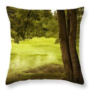 Bent Twig 5 Throw Pillow