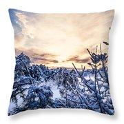 Bergen Winter Throw Pillow