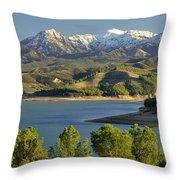 Bermejales Lake Throw Pillow