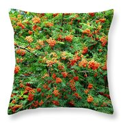 Berries In Profusion Throw Pillow