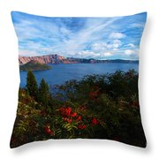 Berries On The Crater Throw Pillow