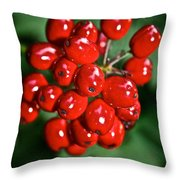 Berry Brilliant Throw Pillow