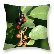 Berry Stages Throw Pillow