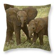 Best Buddies Throw Pillow