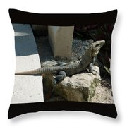 Between A Rock And A Wall Throw Pillow