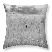 Between Mountains And Meadows Throw Pillow