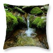 Between The Moss Throw Pillow
