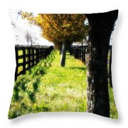 Between Two Farms Throw Pillow