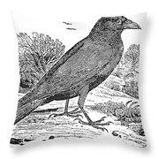 Bewick: Raven Throw Pillow by Granger