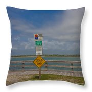 Beyond The End Throw Pillow
