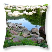 Beyond The Potholes Throw Pillow