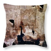 Beyond The Tattered Curtain Throw Pillow by Kevyn Bashore
