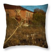 Beyond The Thorns Throw Pillow