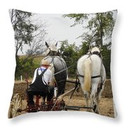Bickleshire Farm 3 Throw Pillow