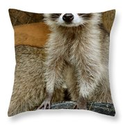 Big And Tall Throw Pillow