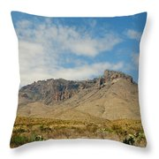 Big Bend Splendor Throw Pillow
