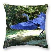 Big Blue In Flight Throw Pillow