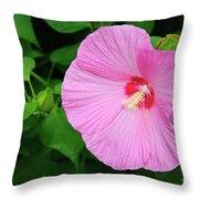 Big Bold Pink Beauty Throw Pillow
