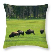 Big Boy Meadow Throw Pillow