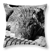 Big Boys Throw Pillow