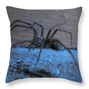 Big Brown Spider Throw Pillow