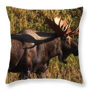 Big Bull Throw Pillow