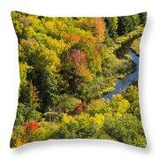 Big Carp River 3 Throw Pillow